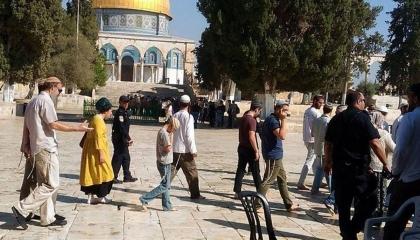 متطرفون يقتحمون باحات المسجد الأقصى ويؤدون طقوسًا تلمودية