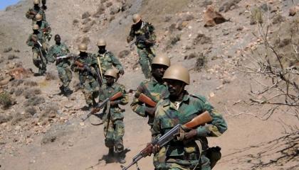 وزير دفاع إثيوبيا السابق: لهذه الأسباب لن تسحب إريتريا قواتها من تيجراي