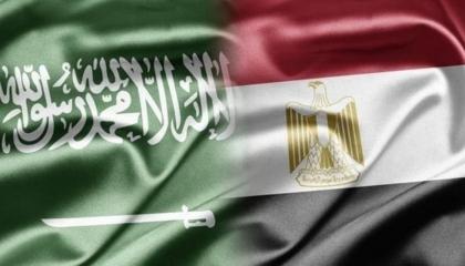 وزيرا خارجية السعودية ومصر يطالبان بوقف إطلاق النار فورًا على الفلسطينيين