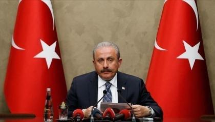 رئيس البرلمان التركي يعزي في ضحايا حادث طائرة الإطفاء