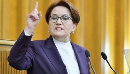 المرأة الحديدية: أردوغان اعترف بالتحريض ضدي