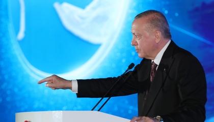 بالصور.. السوشيال ميديا تكذّب مزاعم أردوغان بأنه صاحب الفضل على الأشجار