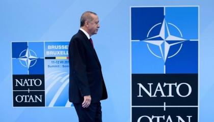 مغامرات أردوغان في الناتو.. قبلة على كف بايدن وجهل باللغة الإنجليزية