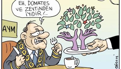 كاريكاتير: حزب الشعوب الديمقراطي ضحية خضوع «الدستورية» التركية للسياسيين