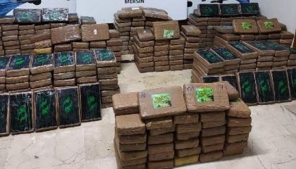 السلطات التركية تضبط 463 كجم كوكايين داخل حاوية «موز»