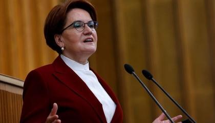 المرأة الحديدية تطالب أردوغان بإجراء استفتاء شعبي بشأن قناة إسطنبول