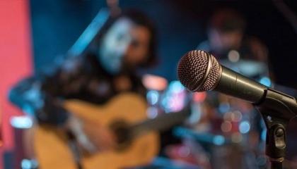 رئيسة لجنة الثقافة والفن بحزب ديفا: «كورونا» ليس السبب لحظر الموسيقى بتركيا