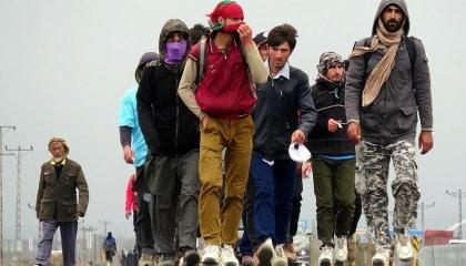 أمريكا تستقبل أول دفعة من المهاجرين الأفغان