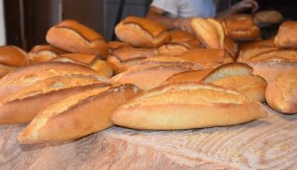 ارتفاع أسعار الخبز في تركيا.. اعرف التفاصيل