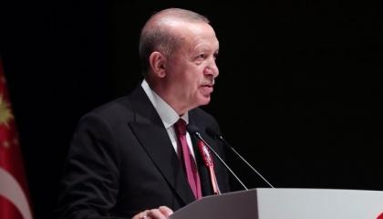 أردوغان: مفتاح حل الدولتين في قبرص المساواة بين الطرفين