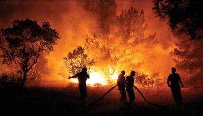 نشرة أخبار «تركيا الآن»: حكومة أردوغان تحمل الأطفال مسؤولية حرائق الغابات