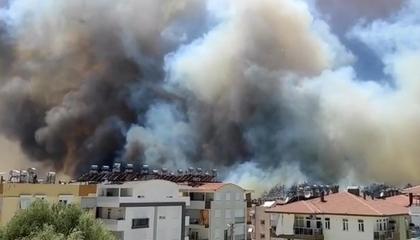 مواطنو «قيصري» التركية بعد الحرائق: لا أصوات لدينا لحزب العدالة والتنمية