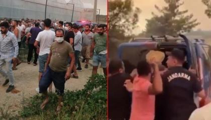 بالفيديو.. مجموعات عنصرية تُهاجم الأكراد في تركيا