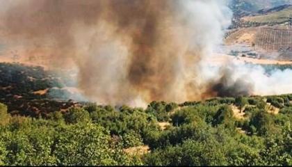 حريق هائل بمدينة موغلا التركية.. وإخلاء لبعض الأحياء السكنية