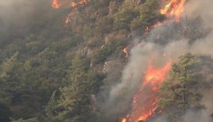 حريق هائل بمنطقة غابات عند مدينة موغلا التركية والنيران تمتد إلى العمران