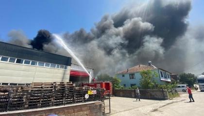 بالصور.. حريق هائل بمصنع مقبلات بمدينة دوزجا التركية