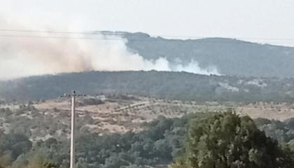 الحرائق تندلع بمناطق الغابات التركية في مدينتي بالكسير وتشوروم