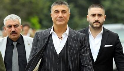 زعيم المافيا التركية: أخطائي «رأس دبوس» بالنسبة لما يفعله رجال أردوغان