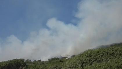 حريق هائل بمدينة هاتاي التركية والرياح تزيد انتشار النيران