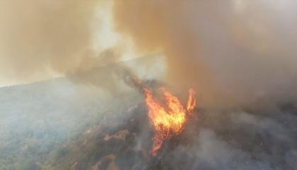الحرائق تتجدد في مدينة موغلا التركية بغابات ميلاس وبودروم