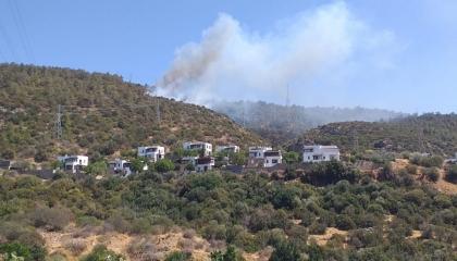 اندلاع حريق بغابات محافظة موغلا التركية وامتداد النيران بفعل الرياح
