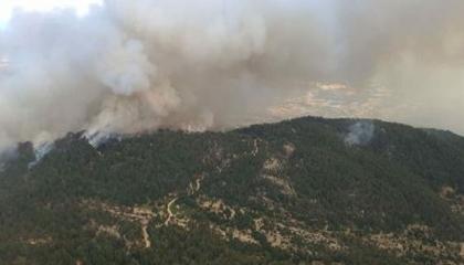 حريق هائل في غابات إزمير التركية