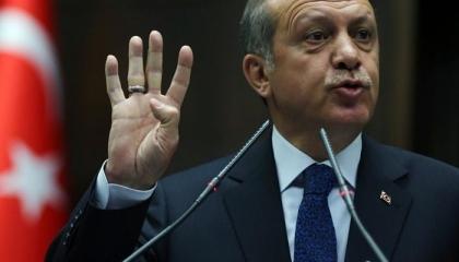 جواد بلا فارس..شاهد لحظة سقوط أردوغان من فوق الحصان
