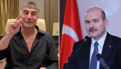 رسالة زعيم المافيا التركية لصويلو: أنا طبيبك النفسي وأعدك بـ«هدية البرلمان»