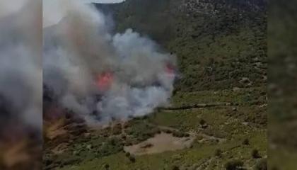 اندلاع حريق هائل في غابات بوردور التركية