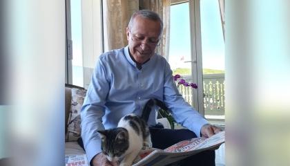 شاهد.. أردوغان يداعب قطة حفيدته بعد انهيار الليرة