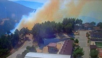 حريق ضخم في غابات إزمير التركية.. والسلطات تحاول السيطرة