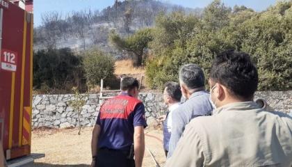 اندلاع حريق هائل في مدينة أيدن التركية