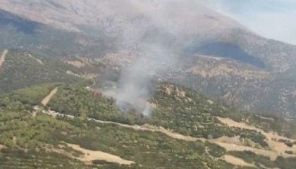 بالصور... اندلاع حريق في مدينة إزمير التركية