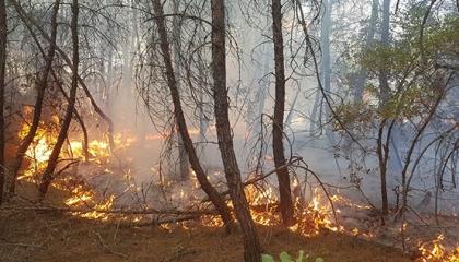 6 سياح روس يشعلون النيران في معسكر للجيش التركي