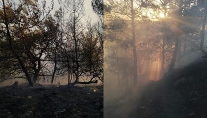 اندلاع حريق هائل بمدينة هاتاي التركية