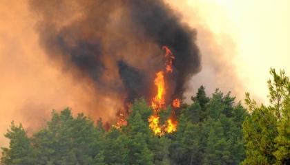 اندلاع حريق ضخم في مدينة غازي عنتاب التركية