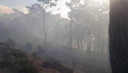 حريق في مدينة باليكسير التركية.. والسلطات تحاول السيطرة