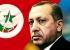 أردوغان والإخوان