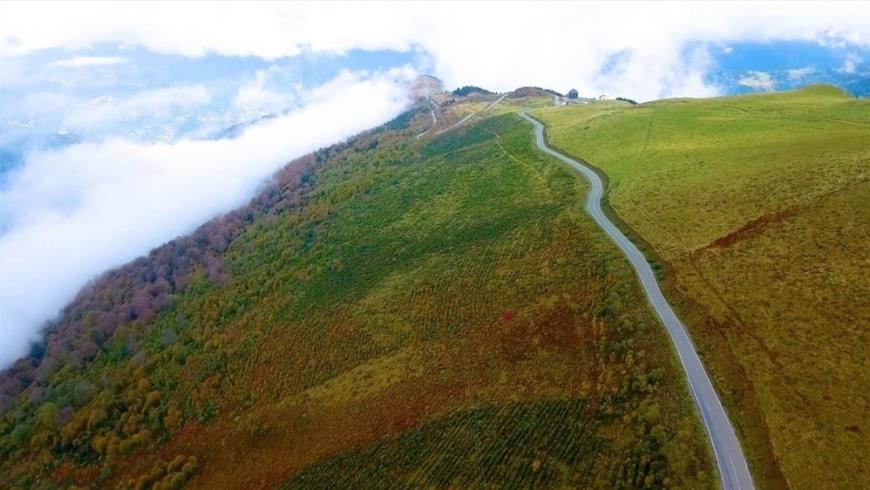 الطريق الأخضر