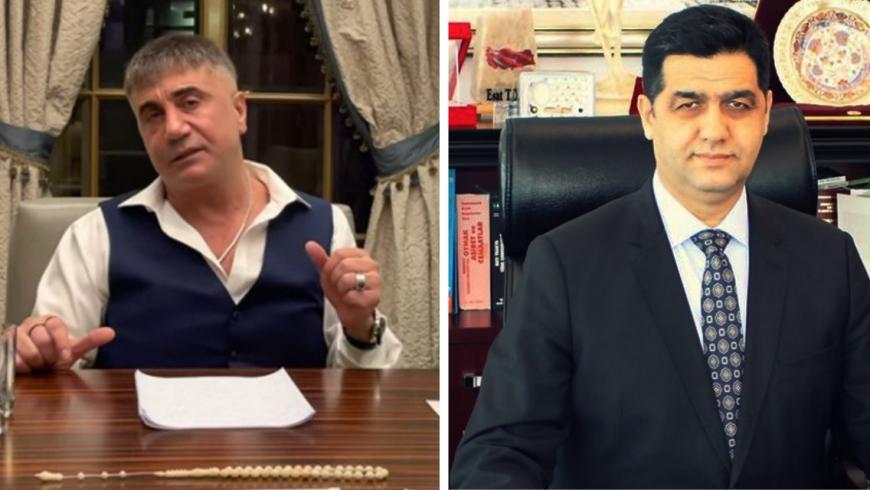 زعيم المافيا وأسد توكلو