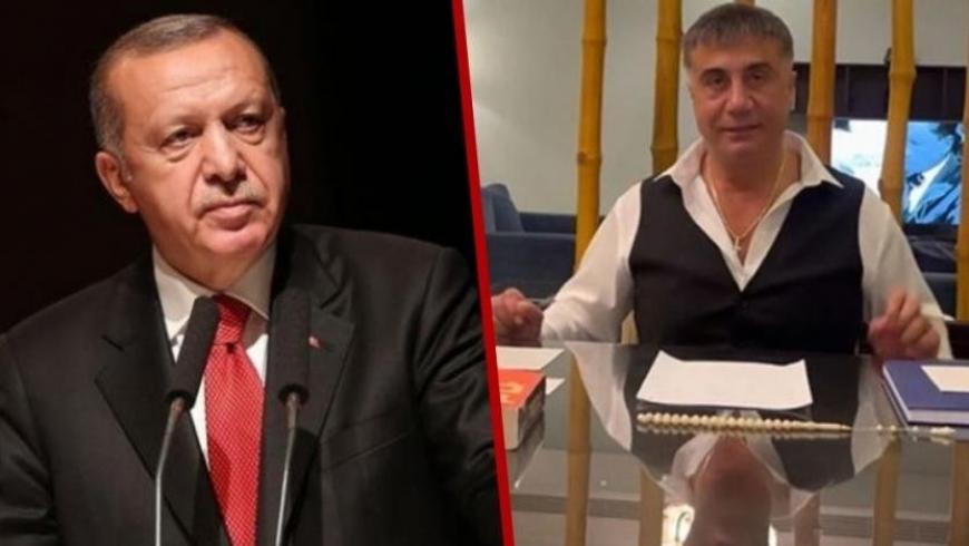 أردوغان وسادات بكر