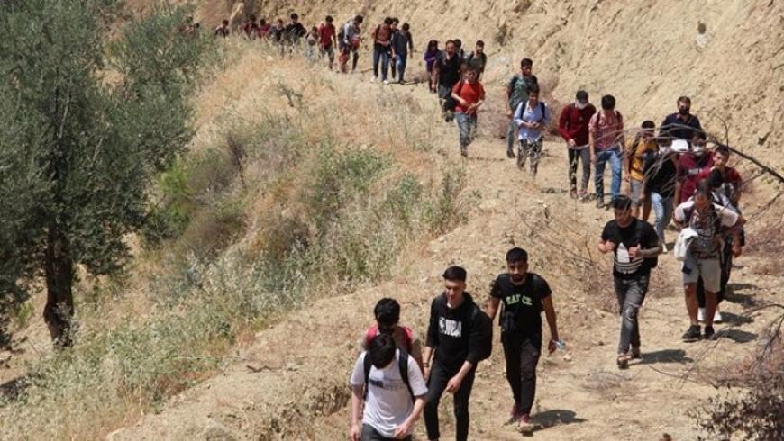 اللاجئين الأفغان