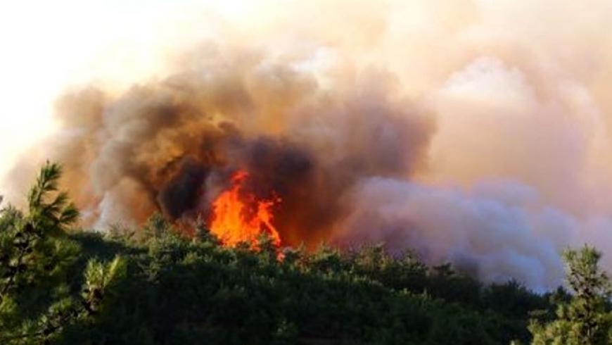 حريق بتركيا