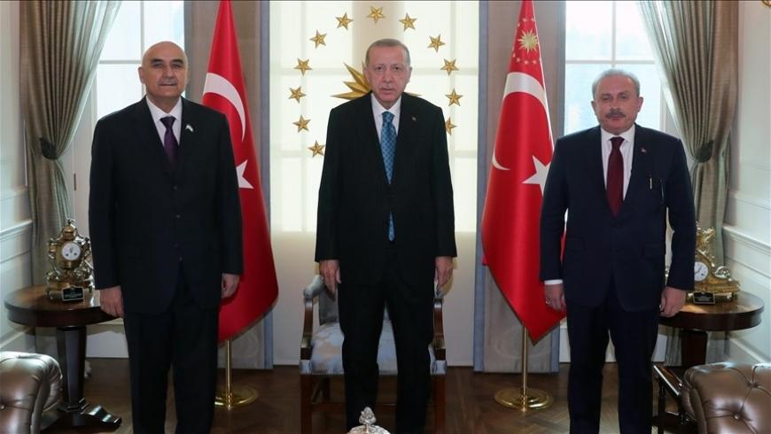 أردوغان، وشنتوب، وزوكير زودا