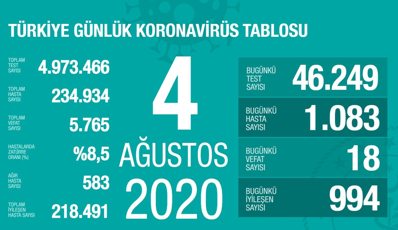 اعداد الكورونا اليومية